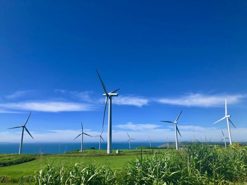 世界には愛しかない風車